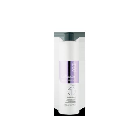 shampoo-stage-1