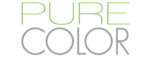 color_Screen Pure Color Logo